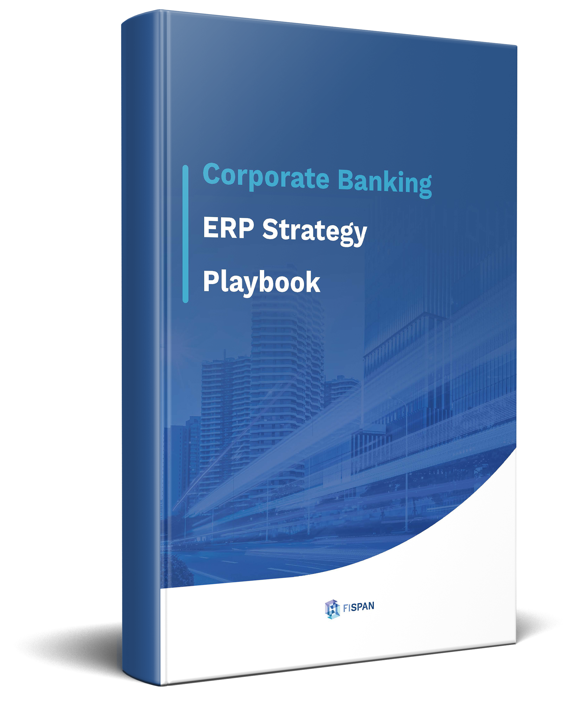 ERP_Strategies_Whitepaper-1